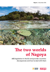 The two worlds of Nagoya