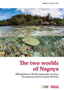 Couverture du rapport: The two worlds of Nagoya