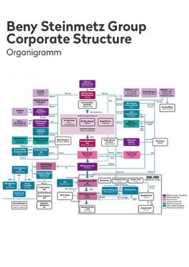 Cover page: Organizational Chart of the Beny Steinmetz Group